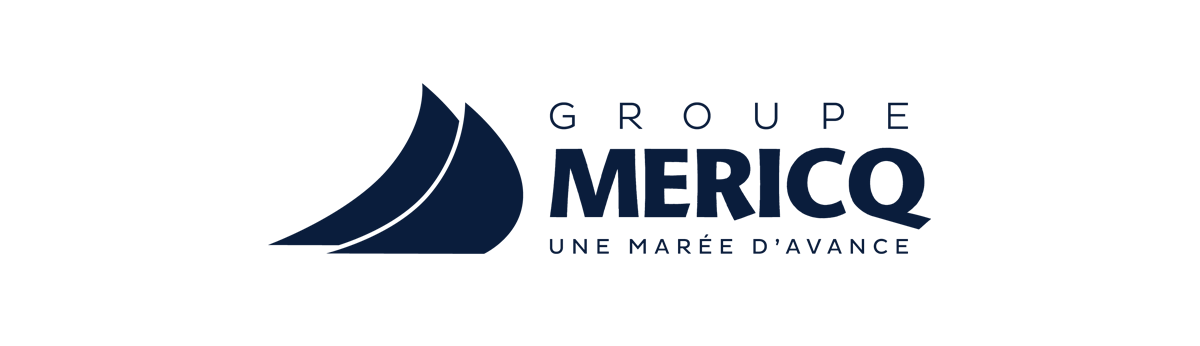 groupe mericq V6Protect