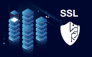 SSL V6Protect